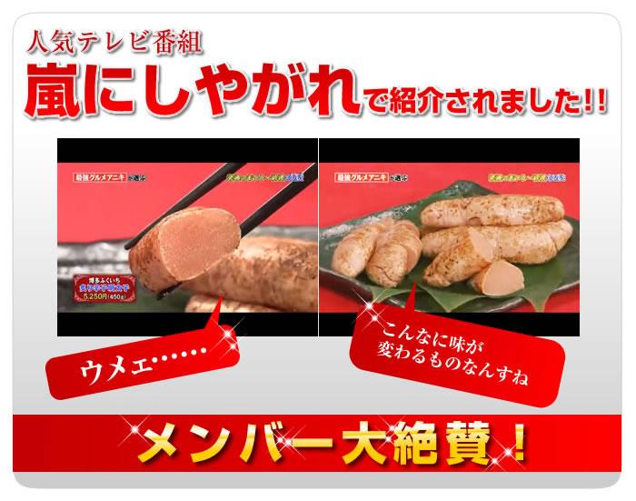 メディア情報_2012-06-16_arashi